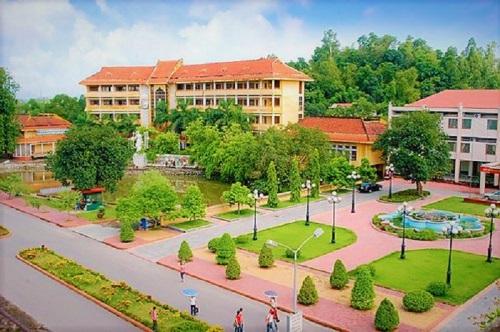 Đại học Nông lâm Thái Nguyên là cơ sở đào tạo nông lâm nghiệp trình độ đại học hàng đầu ở Việt Nam