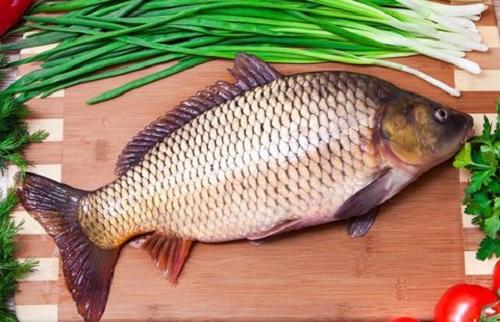 Cá chép giòn nấu món gì ngon?