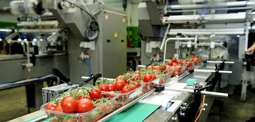 Chương trình đào tạo ngành công nghệ thực phẩm